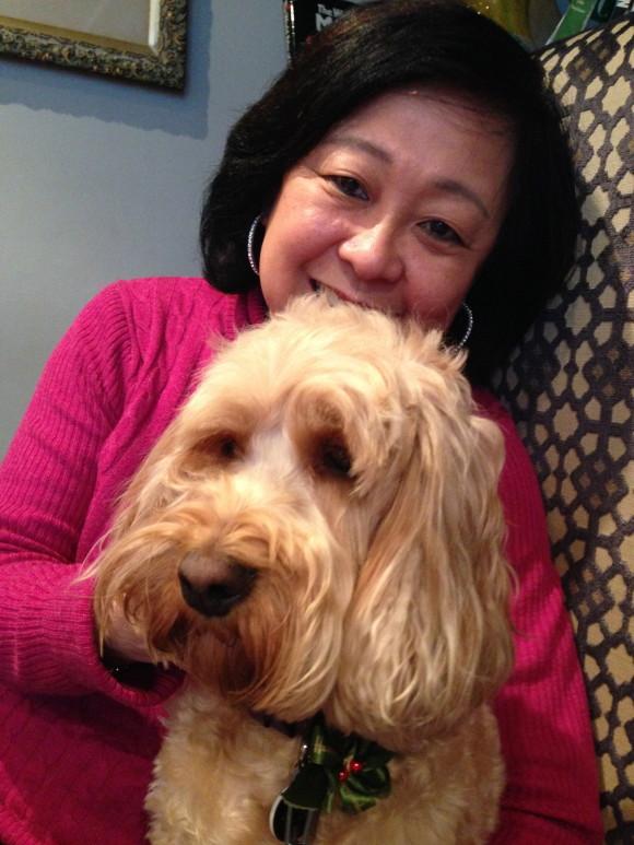 Asian Dog Grooming Uk