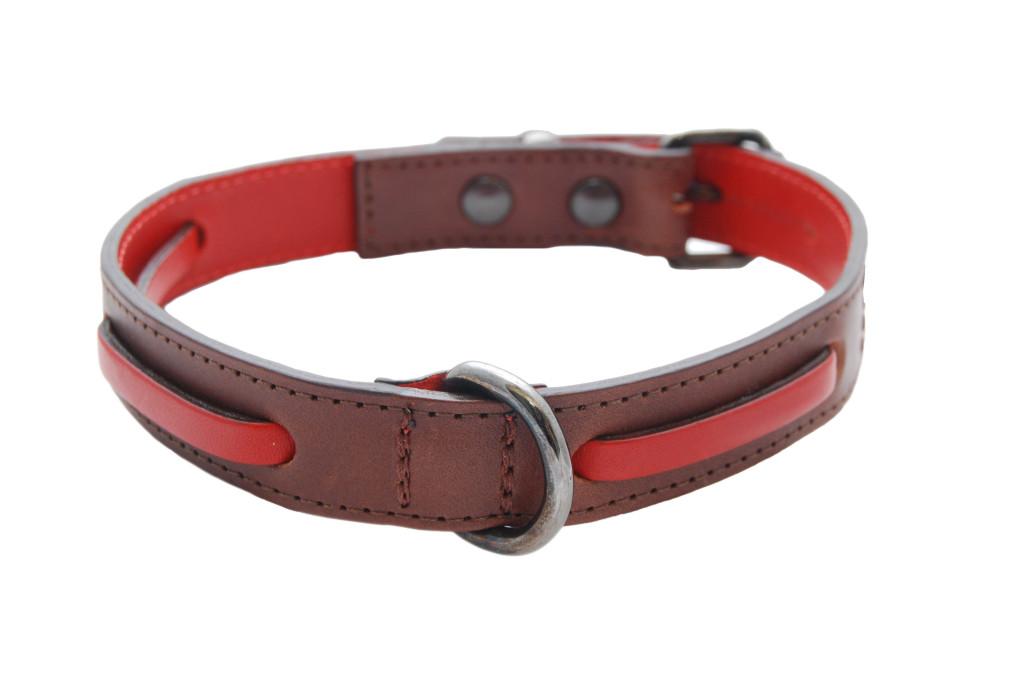 Dog Collar Ward