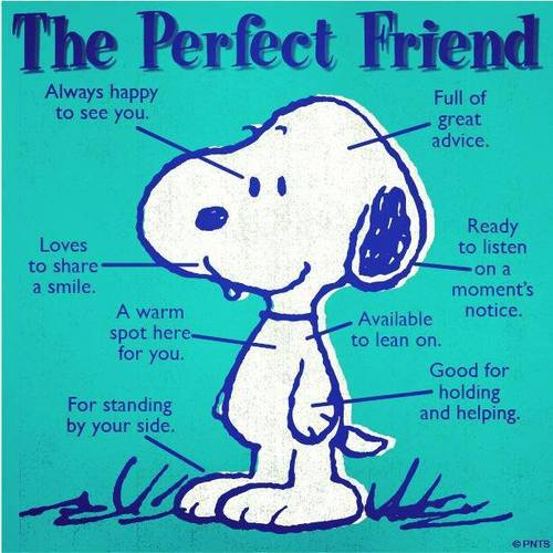 The Perfect Friend | M...