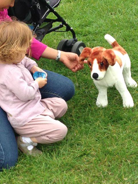 Microchip Dog Pet Store Dewitt Ny