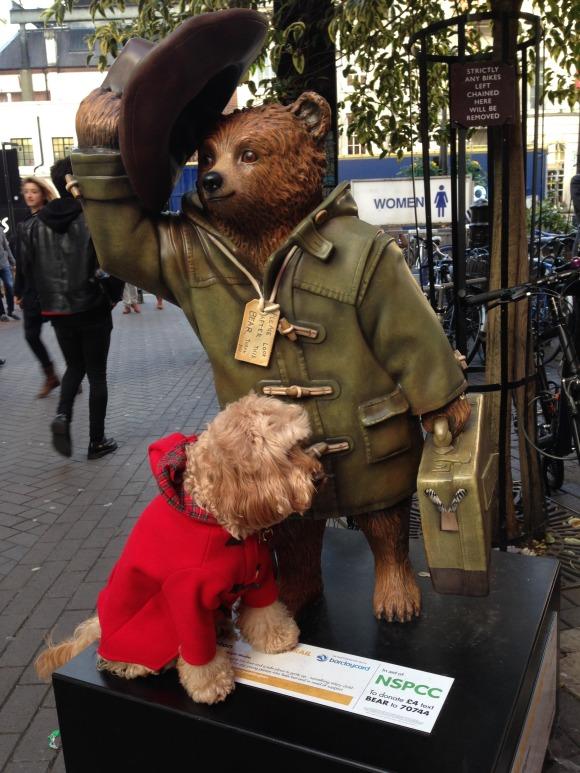 Dapper Dog Grooming Enniskillen