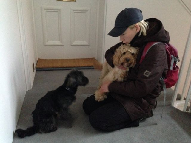 Dog Gets Jealous Of Stuffed Animalk