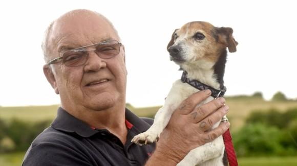 Dog Grooming Warwickshire