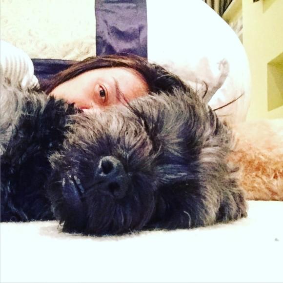 Dogs Tummy Rumbling Wont Eat Food