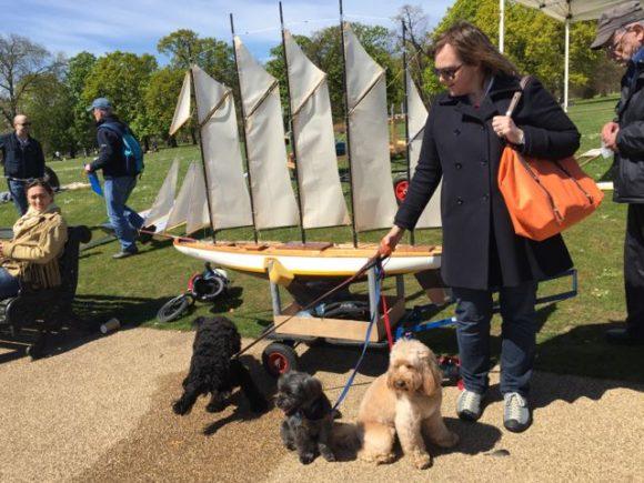 Dog Walks Round Brampton