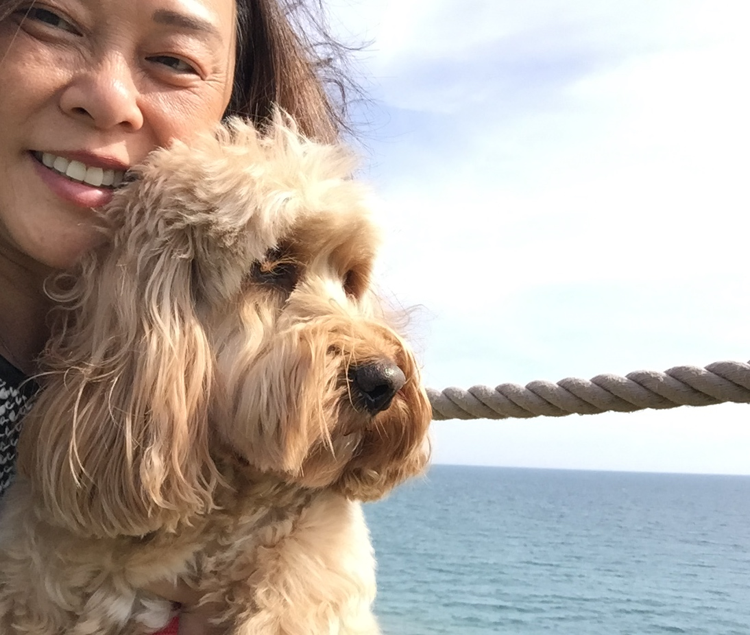 Dog Friendly Amelia Island Hotels