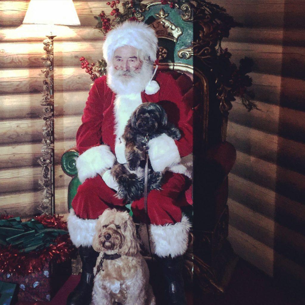 Dog Friendly Santa Fe