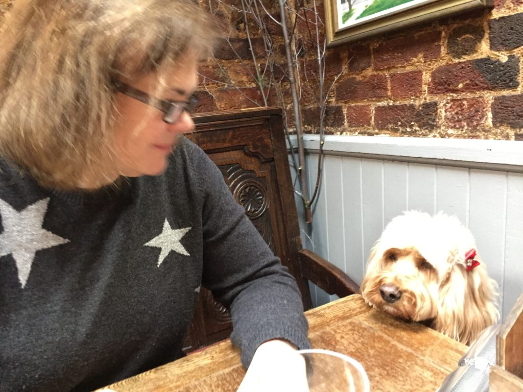 Dog Friendly Pub In Birmingham Near Train