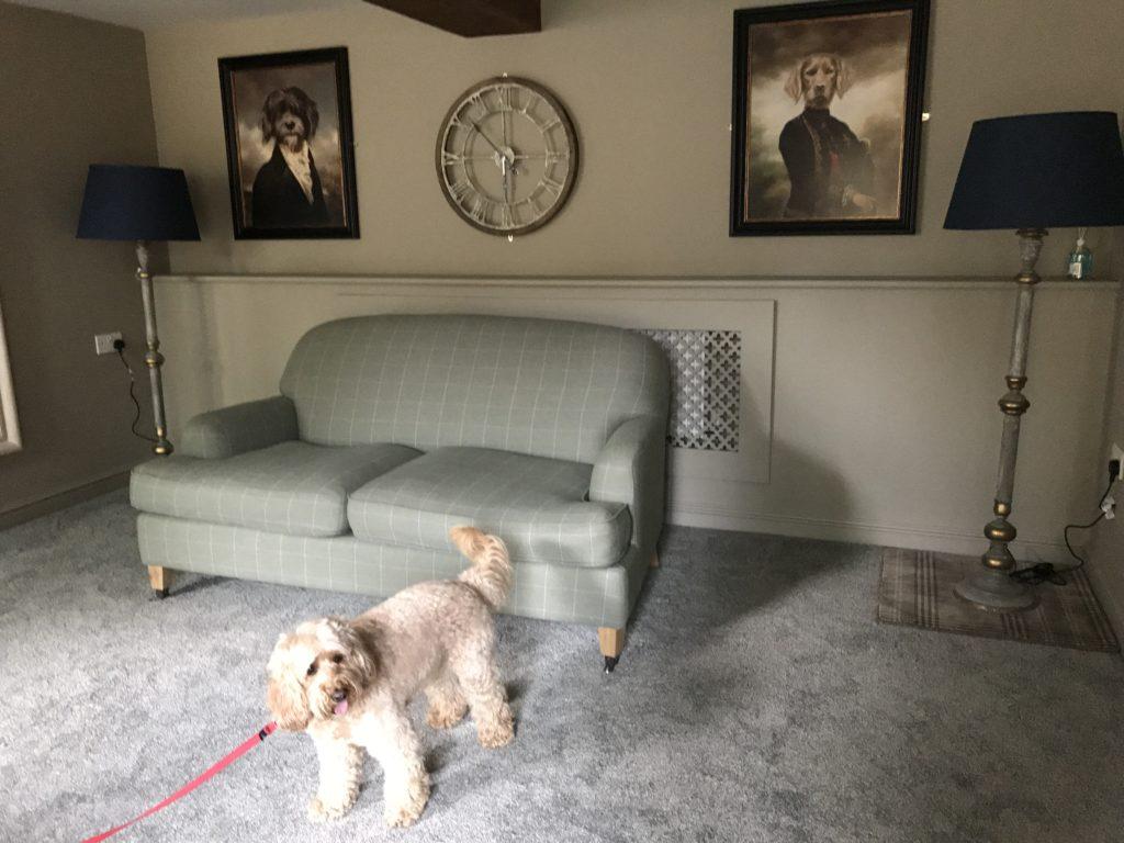 Dog Friendly Weddinjg Venues Dundee