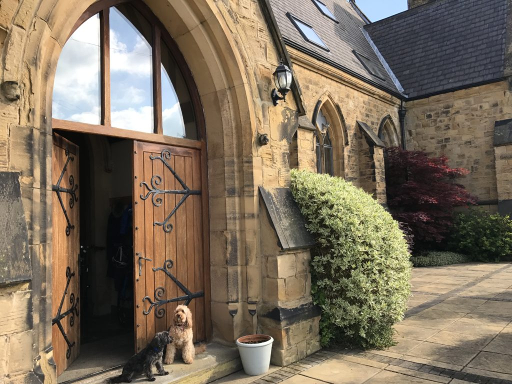 Dog Grooming Chapel Market Islington