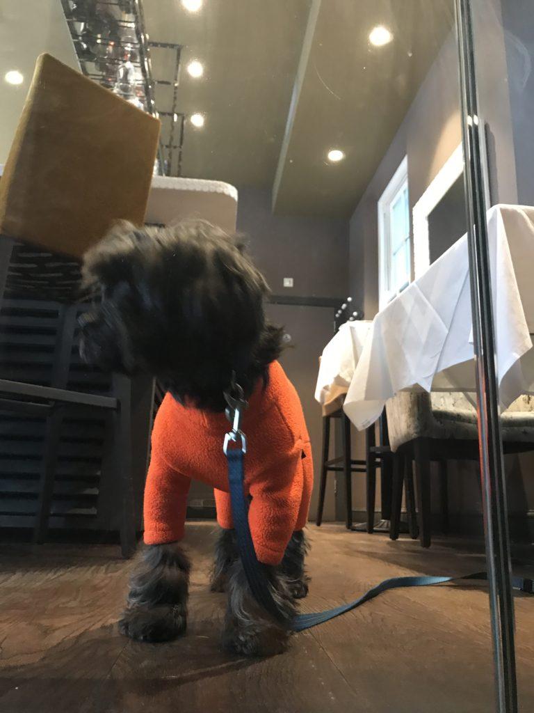 Black Dog Restaurant Stirling Menu