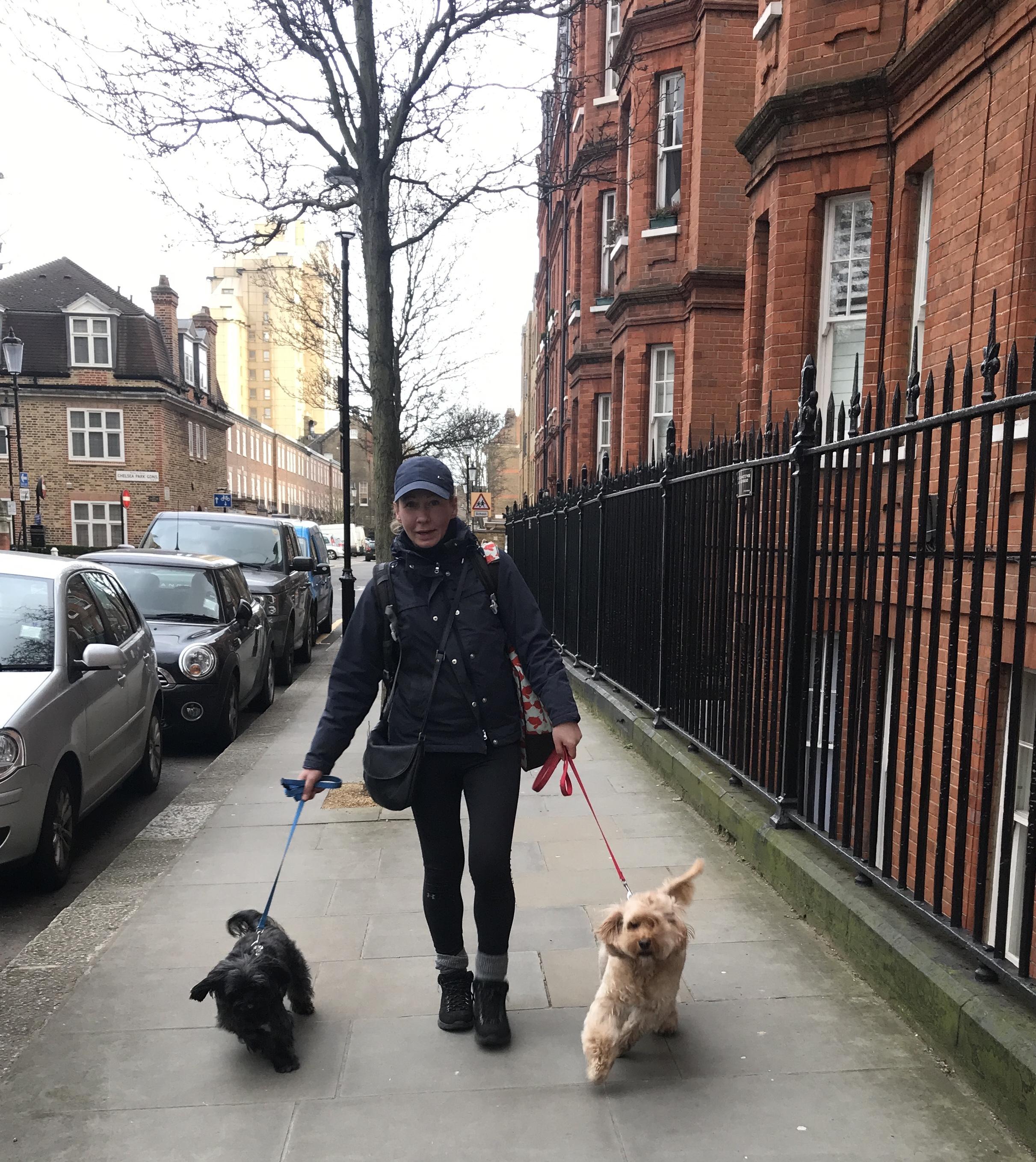 Best Dog Walks In Sheffield