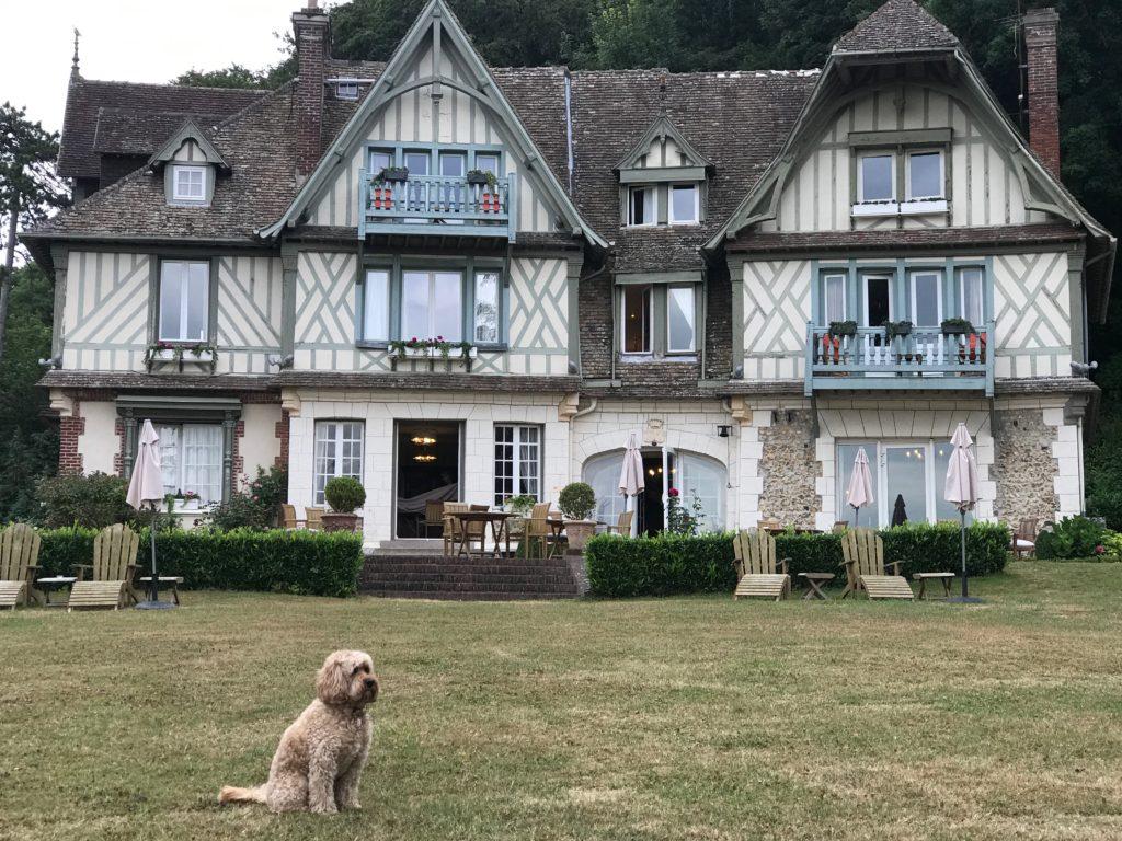 Dog Friendly Hotel Deals