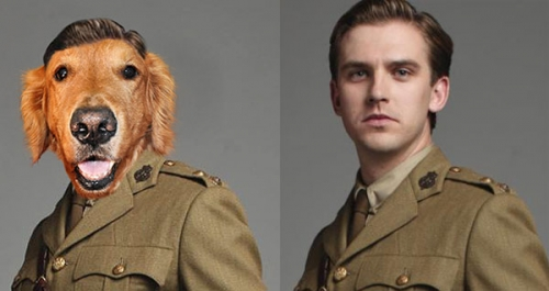downton-abbey-dogs-2