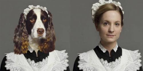 downton-abbey-dogs