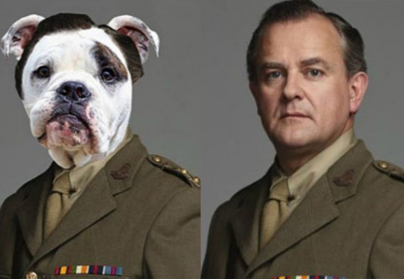 see-the-cast-of-downton-abbey-as-dogs-600x400