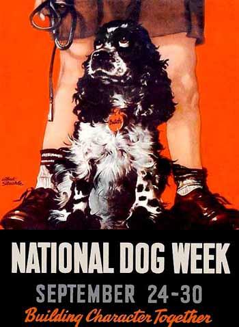 staehle_butch_nat_dogweek-1