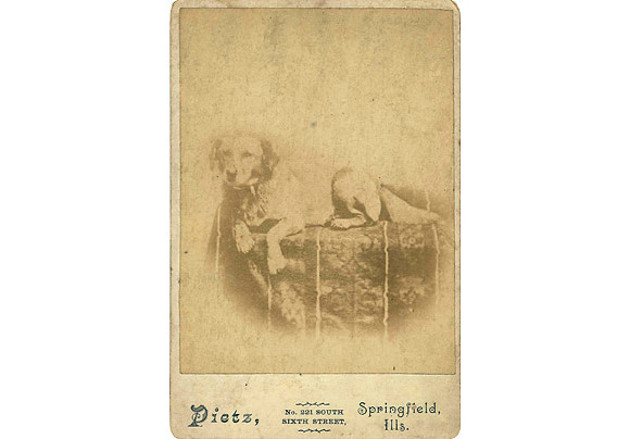 first_dogs_01a