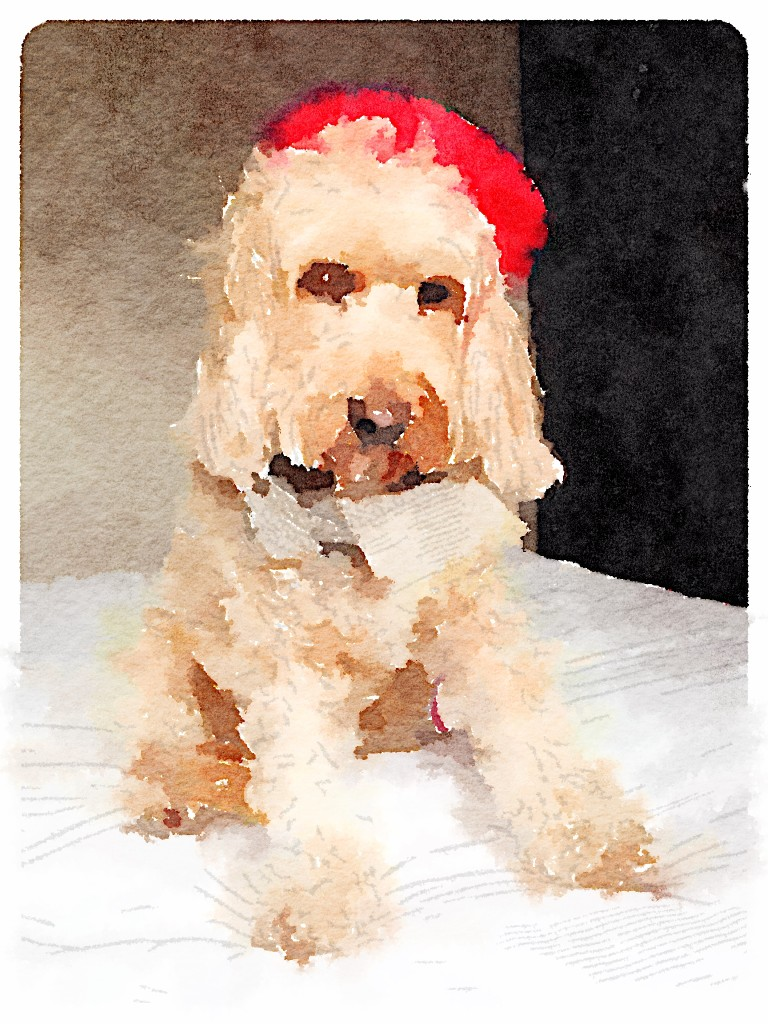 Waterlogue-4